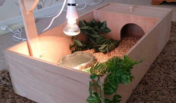 Как сделать террариум сухопутной черепахи своими руками 122